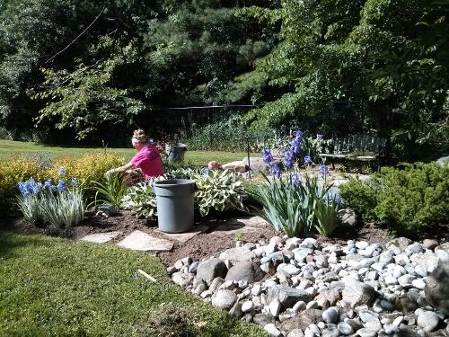 MLC staff working in a garden